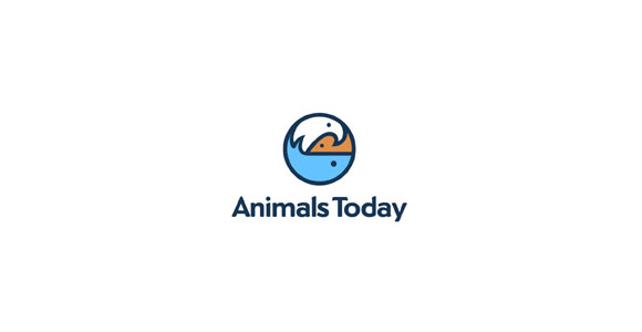 40animalstoday