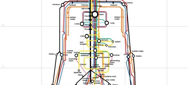human_subway_map_full_size61